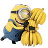 :despicable-me-2-minion-3:
