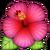 :emoji_natur-70: