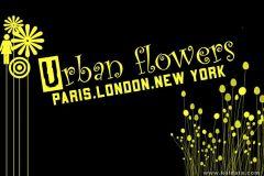 urban fliwers