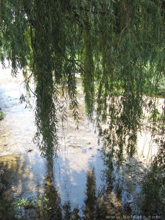 Река Луда яна в гр. Стрелча/ Crazy Yana river in Strelcha to