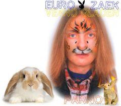 euro-zaek.jpg
