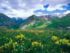 Nature (5).jpg