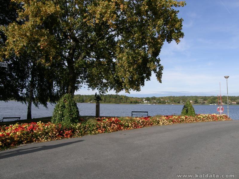 Autumn-003.jpg