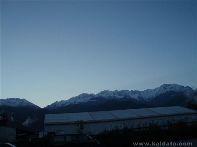 свеж алпийски сняг.JPG