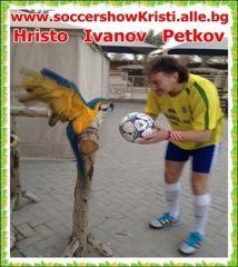0181.Hristo  Ivanov  Petkov