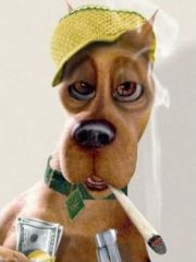 SMOKE DOG