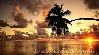 Hawaii_Condos_Golden_sunset_hd_wallpaper.jpg