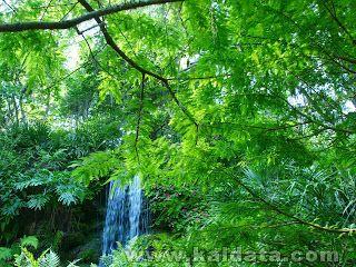 waterfall-dsc08348 (1).jpg