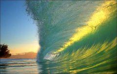 Hawaii wave.jpg