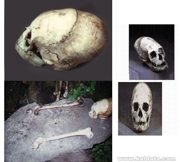 Удължени скелети, Еквадор