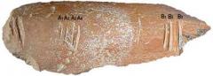 Козарника, древна кост със следи от човешки резки - календар на 1 милион и 400 000 г.