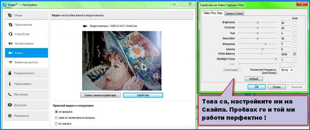 567d34b57ea27_Skype-.thumb.jpg.da1b19484