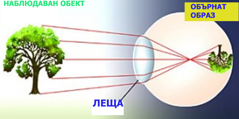 Zakona za Perspektivata - Stamat - 08.jpg