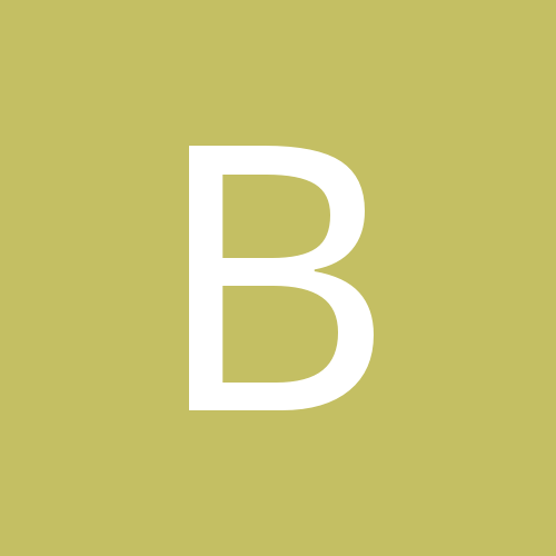 bibi_1234