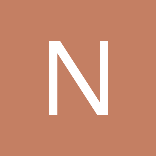 niki_rat