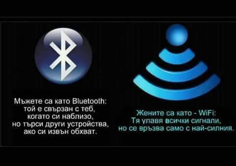 FB_IMG_1549616086621.jpg