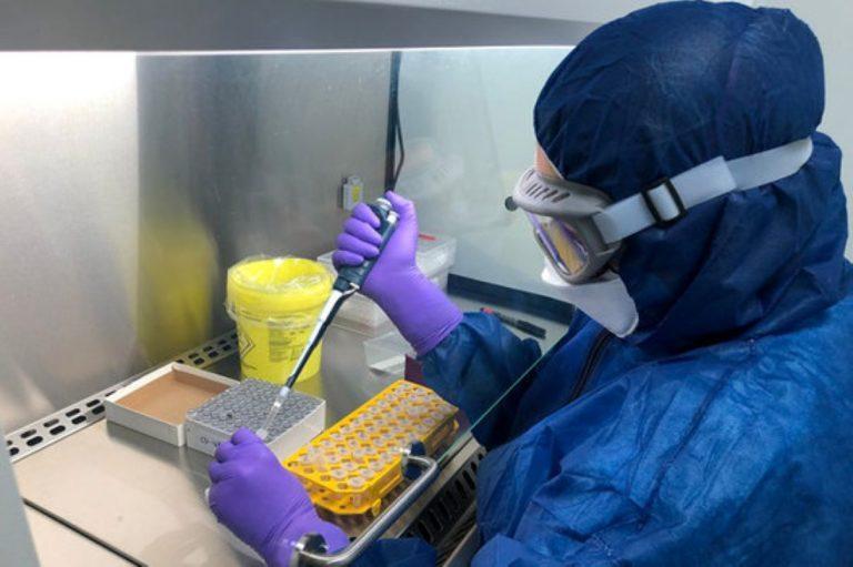 По време на направените наскоро серия от експерименти учени успяха